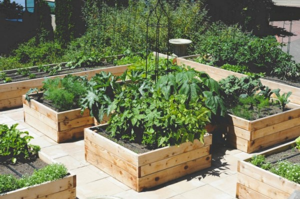 vegetable roof garden 20+ Small Rooftop Garden Designs, Ideas | Design Trends