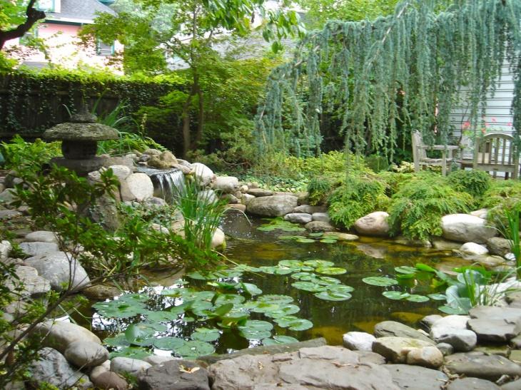 18+ Garden Pond Designs, Ideas   Design Trends - Premium ... on Landscape Pond Design id=49595