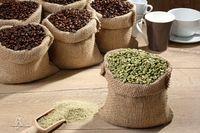 Sedang Digemari Banyak Orang, Ini Manfaat Konsumsi Green Coffee Bagi Tubuh