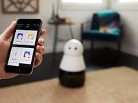Kenalkan Kuri, Si Robot Gemes dari Jerman