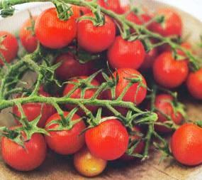 10 Kiat Menyantap Sayur dan Buah Segar
