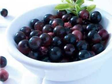 Acai Berry Ampuh Turunkan Kolesterol dan Gula Darah
