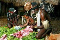 Warga Lembah Baliem sedang membersihkan babi (dok. Bayu Maitra/ACI)
