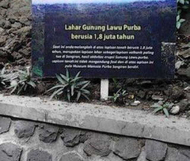 Tanah Di Sangiran Yang Merupakan Bekas Lahar Gunung Lawu Suciana Dwi Irawatidtraveler