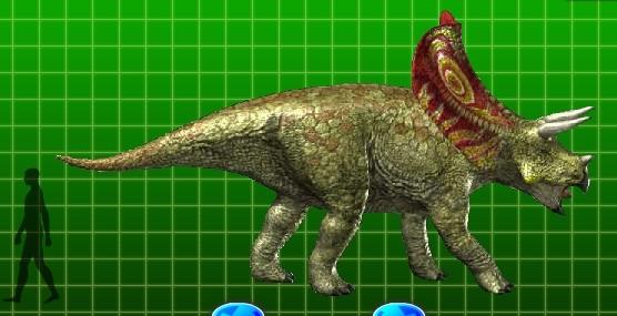 Torosaurus Pictures Amp Facts The Dinosaur Database