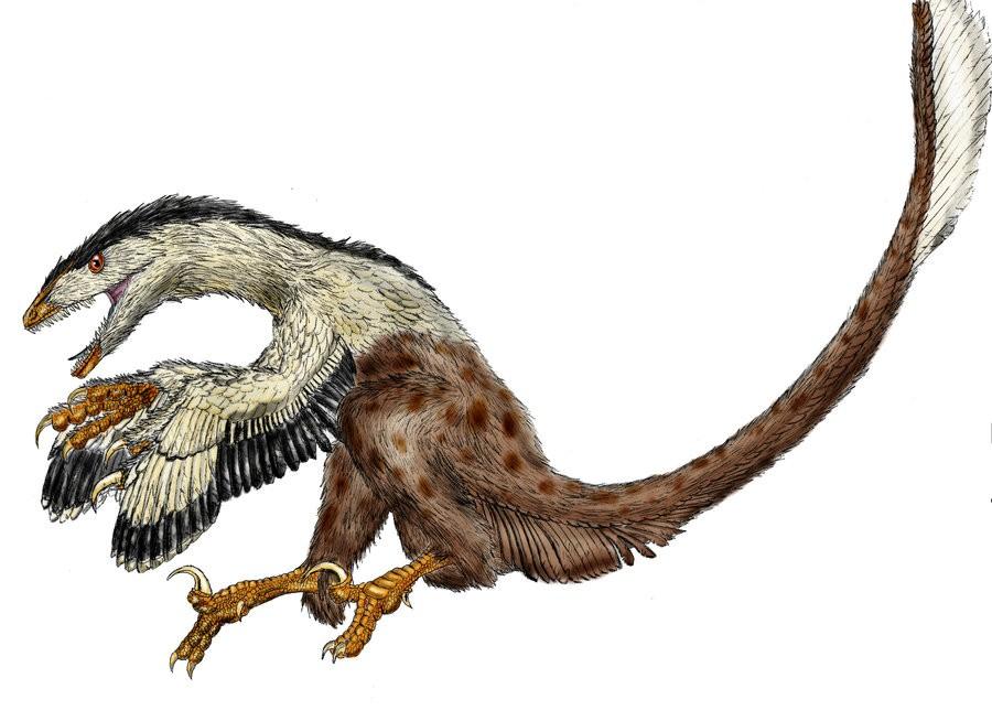 Image result for deinonychus
