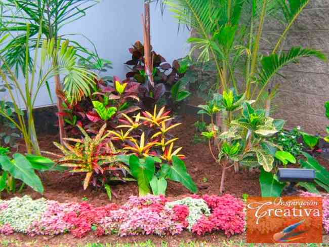Aibonito Flower Festival | Aibonito Flower Festival | Puerto Rico Day Trips Travel Guide