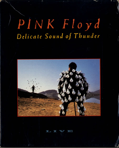 Poster do filme Pink Floyd: Delicate Sound Of Thunder