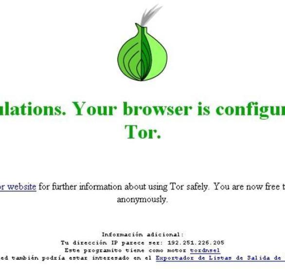 Navegación segura con Tor 2