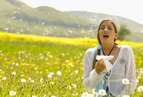 A woman sneezing due to pollen allergies.