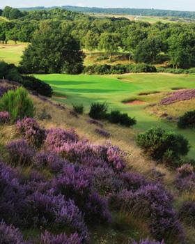 Best Heathland Course