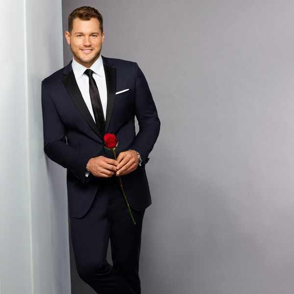 The Bachelor Season 23