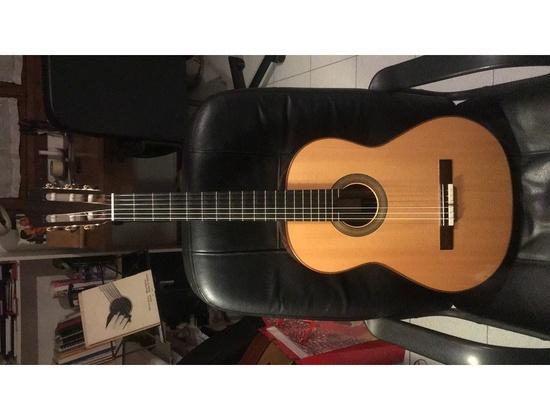 Fender Acoustic Guitar 400 Ce