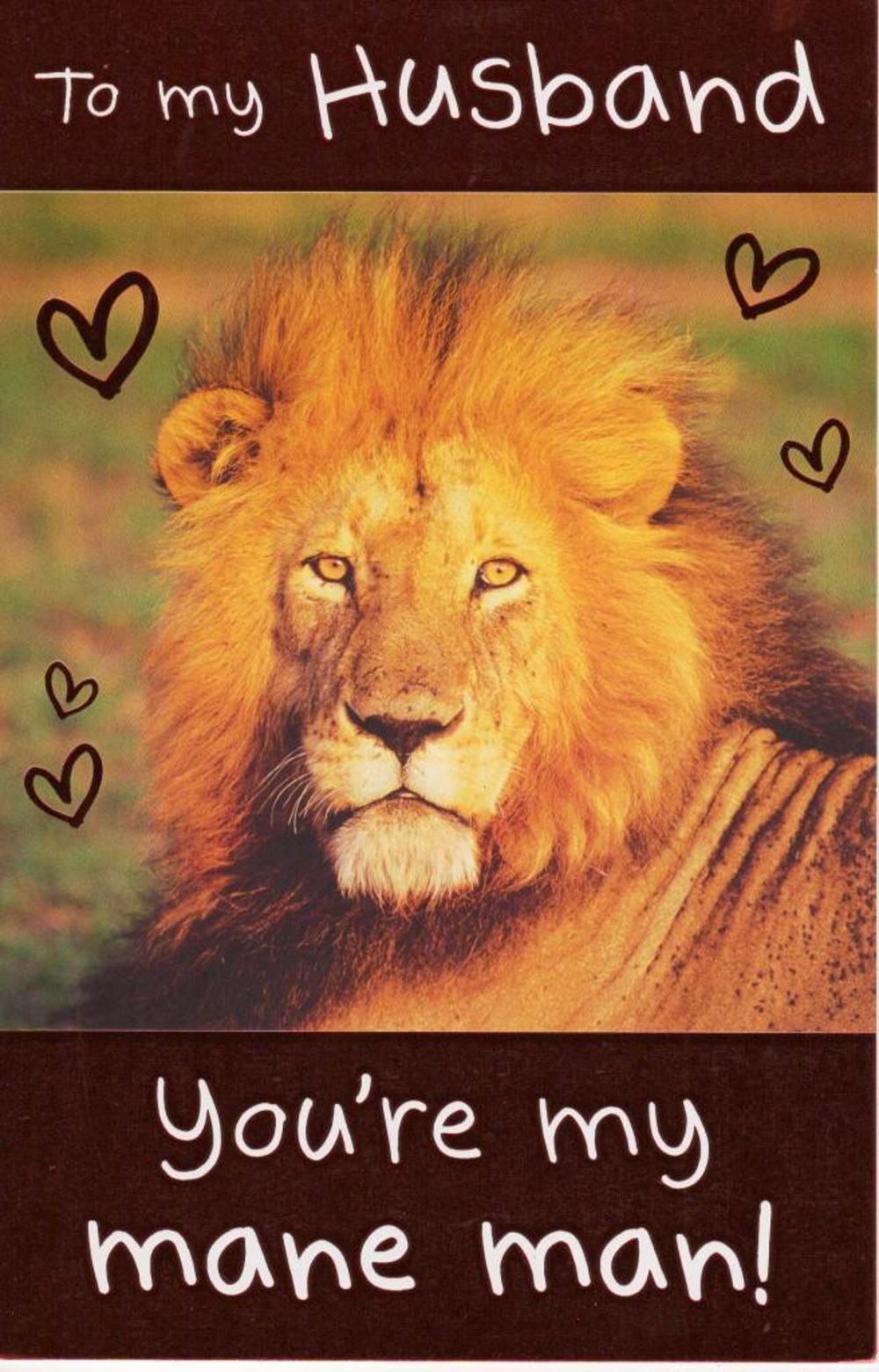 Box Lion King Valentine