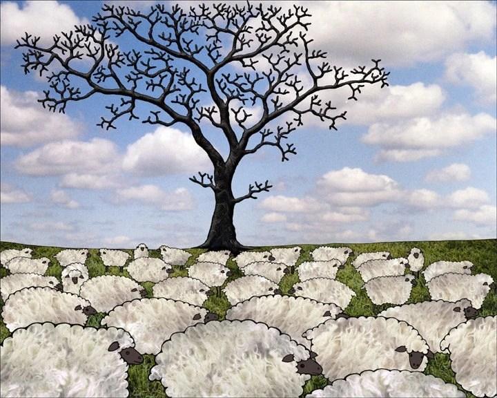 Sheep a digital print by Sarah Knight 8X10
