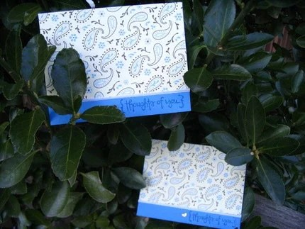Pack of 2 Paisley Thoughts of You Cards