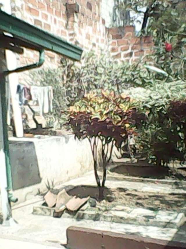Resultado de imagen para casas de prado medellin con solar