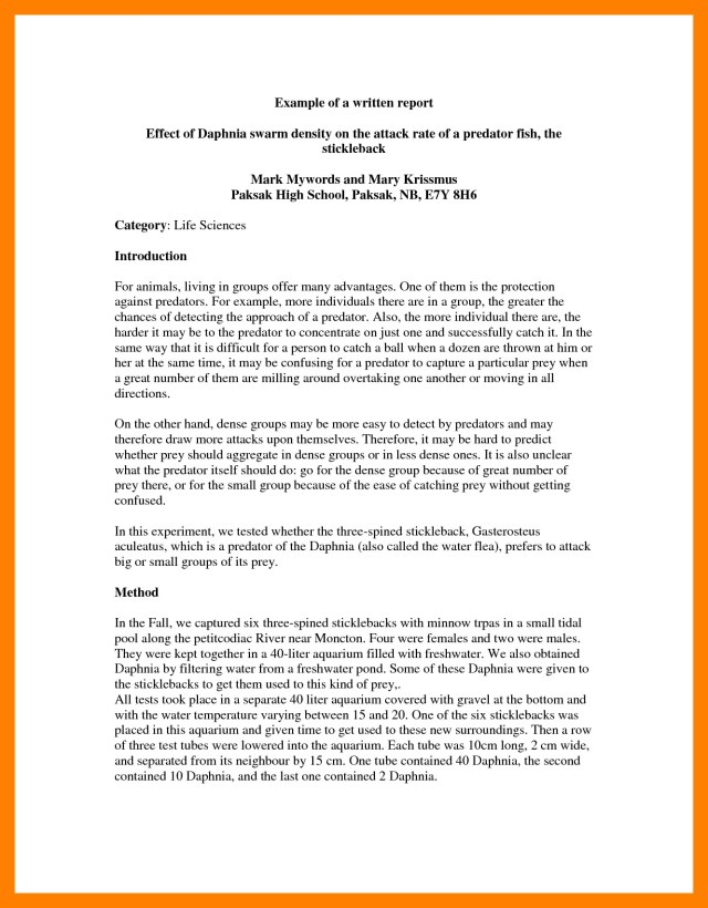 College Report Writing Examples – 29+ English Report Writing