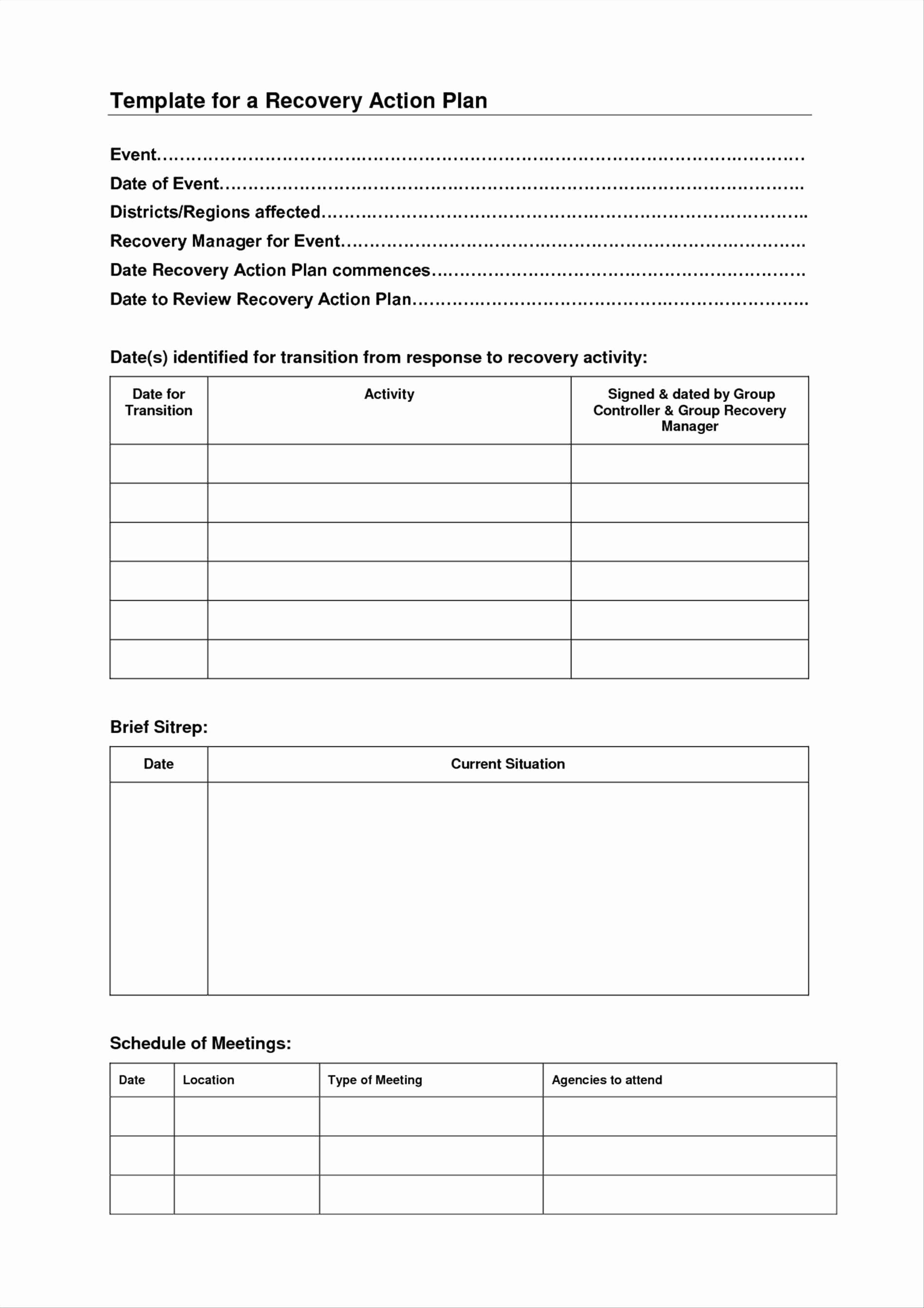 Blank Wellness Recovery Action Plan Template