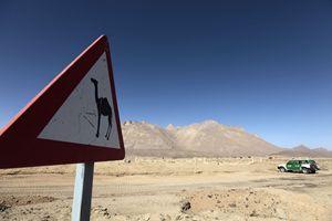 Uno scorcio del Sahara algerino. In primo piano un curioso cartello che invita quanti percorrono in jeep le carovaniere a prestare attenzione all'attraversamento dei cammelli, che possono costituire un pericolo per chi viaggia. Foto Reuters.