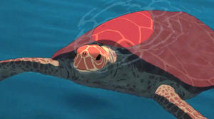 The Red Turtle: International Trailer 1