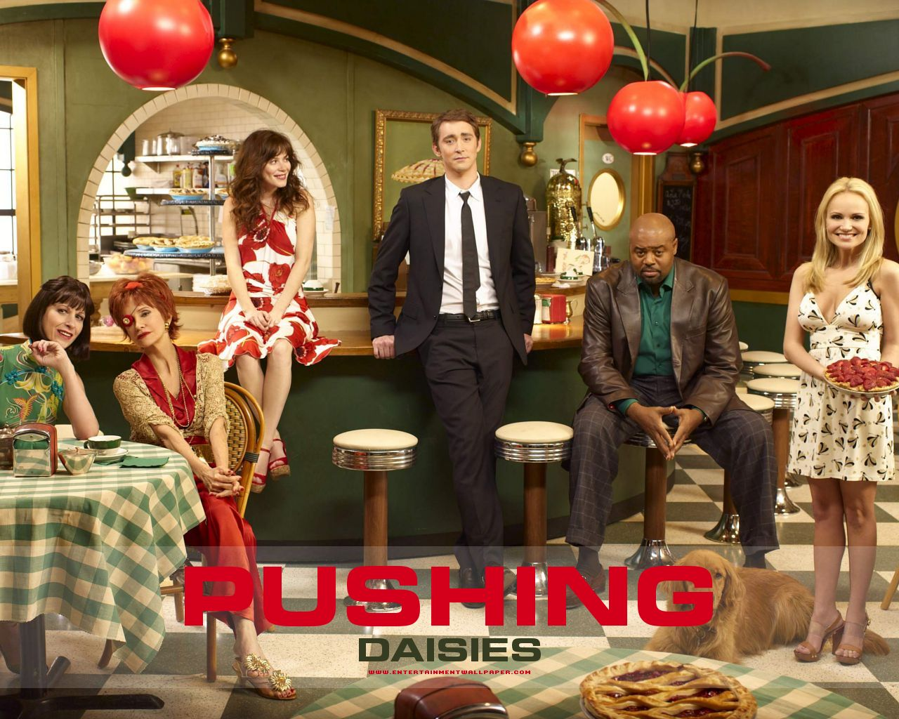https://i1.wp.com/images.fanpop.com/images/image_uploads/Pushing-Daisies-Cast-pushing-daisies-791484_1280_1024.jpg