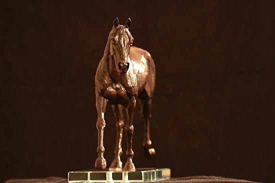 Talisman by Ruth Green Bronze ~ 10' x 12'