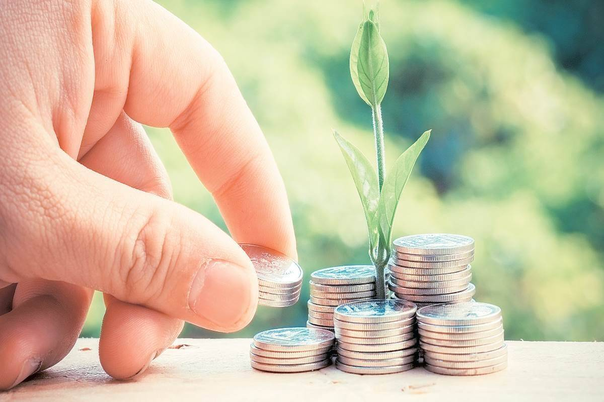 HOW TO REBUILD INVESTMENT PORTFOLIO KNOW HERE AND SOME SMART INESTING TO TIPS TO avoid negative return