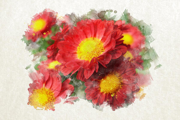 Chrysanthemum Watercolor Art Prints for Sale