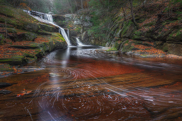 Ethereal Autumn by Bill Wakeley