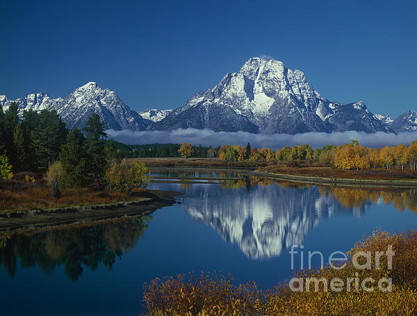 Morning Cloud Layer Oxbow Bend In Fall Grand Tetons by Dave Welling