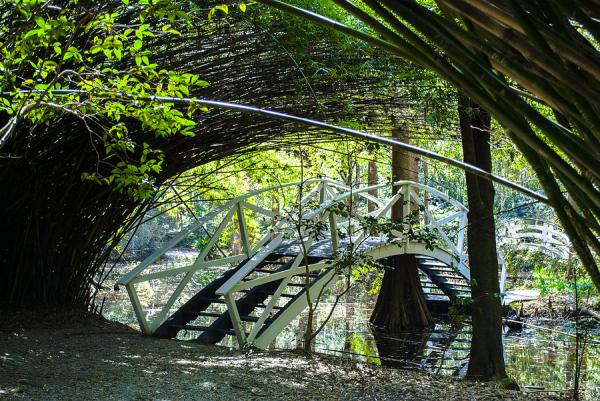 bamboo garden bridge Bamboo Garden Bridge Photograph by Optical Playground By