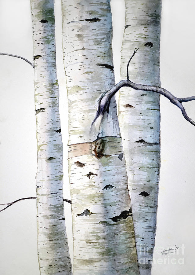 Image Result For Paintings Of Birch Trees In Acrylic