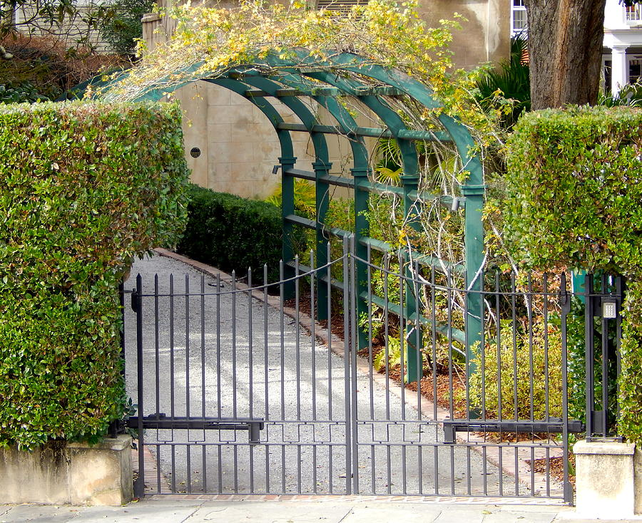Charleston Driveway Arch Photograph By Terry Cobb