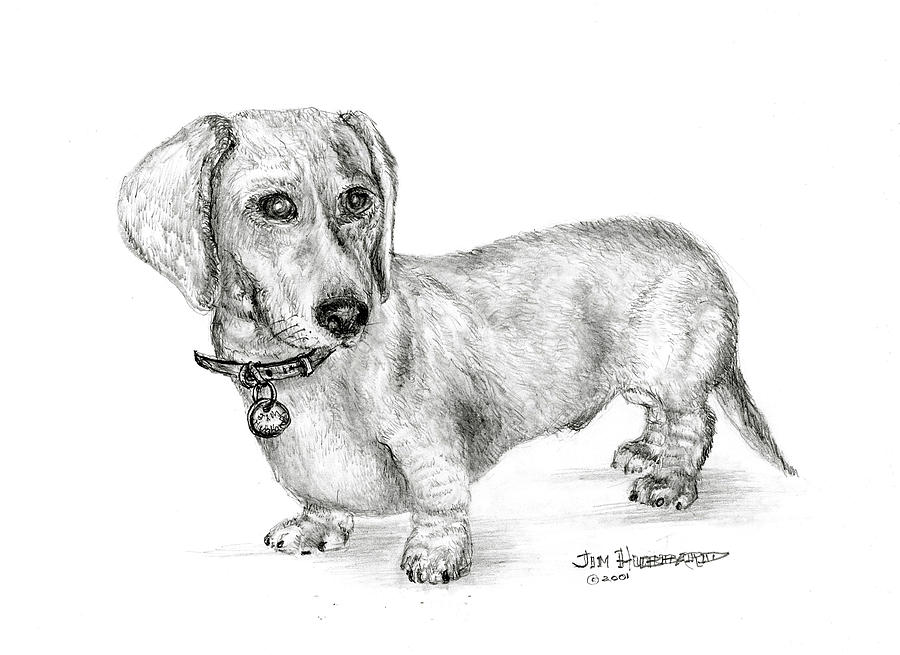 Sausage Pencil Drawings