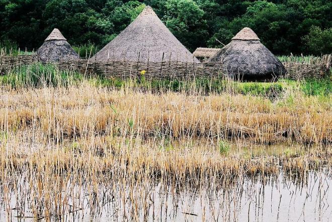 Mujeres Vikingas y Colonización