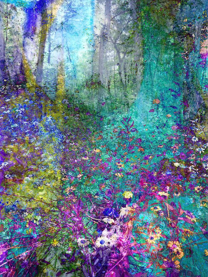 Enchanted Forest Photograph By Ann Powell