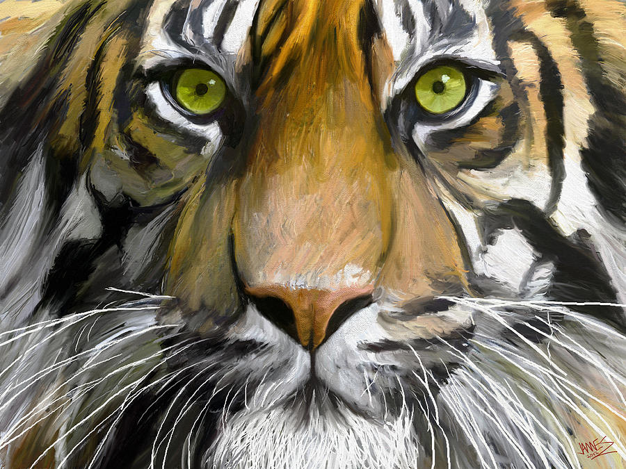 Eye Of The Tiger Painting By James Shepherd