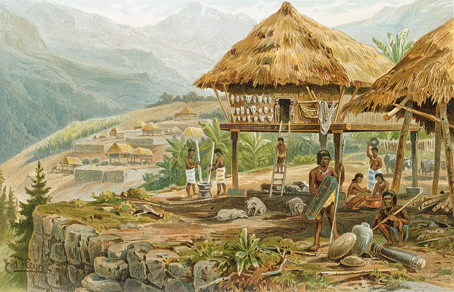 Igorrote Farm In Luzon Philippines From The History Of