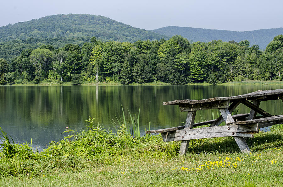 Current noaa weather forecast for mount pisgah state park pa closest to the elevation of 1224 feet. Mount Pisgah State Park In Pennsylvania Photograph By Debbie Karnes