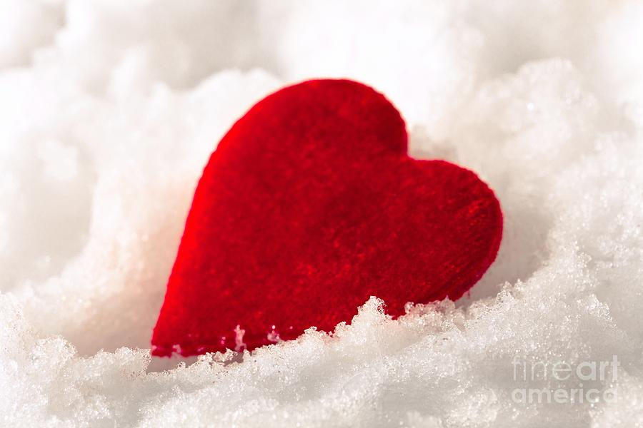 Red Velvet Heart On Snow For Valentine Day Photograph By