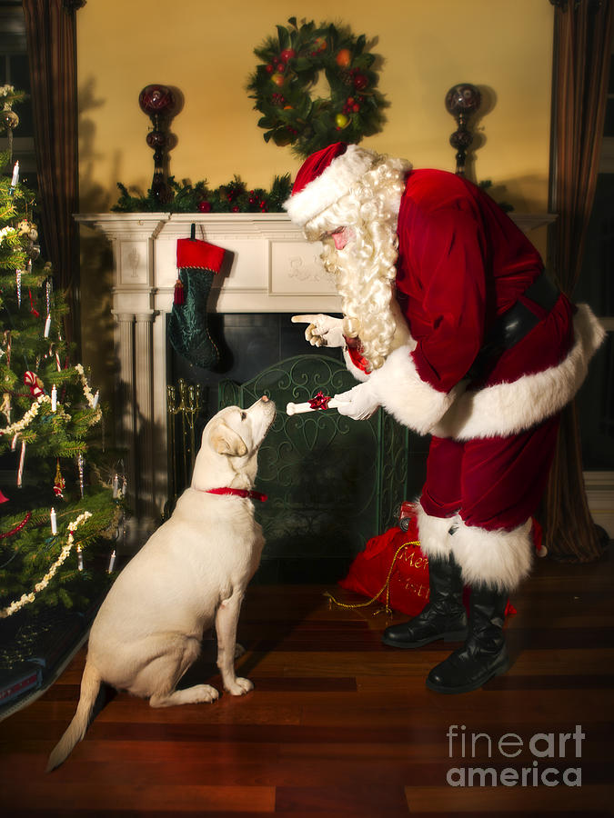 Santa Giving The Dog A Gift Photograph By Diane Diederich