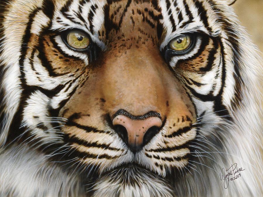 Siberian Tiger Closeup Painting By Wayne Pruse