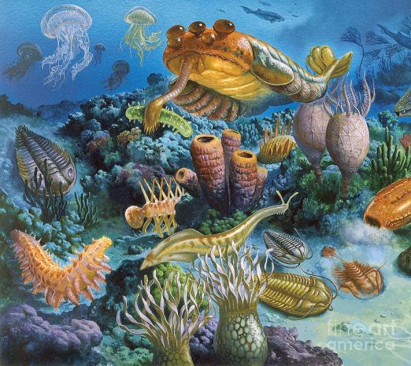 Underwater Paleozoic Landscape Photograph by Publiphoto