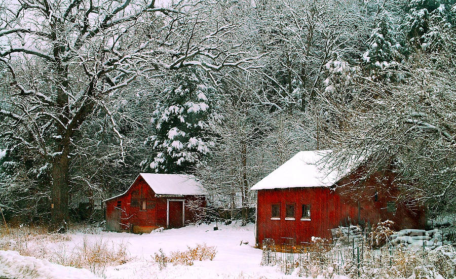 Vintage Winter Barn Photograph By Peggy Franz