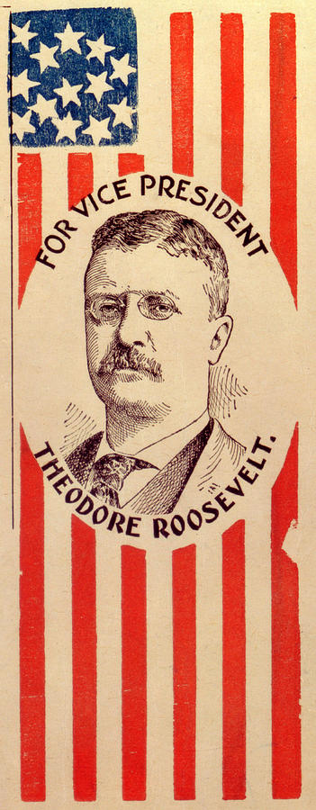 campaign poster for theodore roosevelt by everett