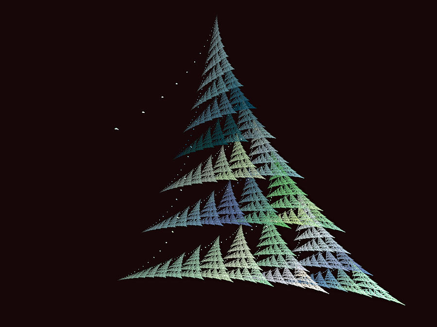 Christmas Trees Digital Art By Lynn Bolt
