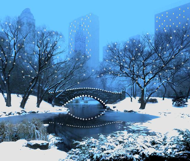 New York Winter In Central Park For The Holidays Painting By Elaine Plesser