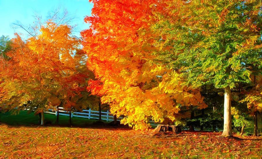 https://i1.wp.com/images.fineartamerica.com/images-medium-large/ohio-autumn-maples-dennis-lundell.jpg