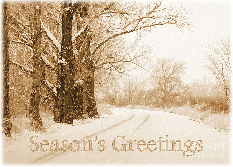 Soft Sepia Seasons Greetings Card Photograph By Carol Groenen